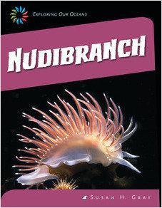 Cover: Nudibranch