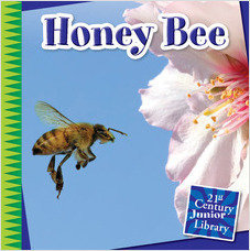 Cover: Honey Bee