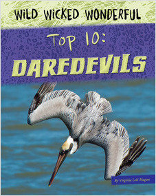 Cover: Top 10: Daredevils