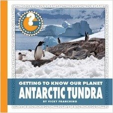 Cover: Antartic Tundra