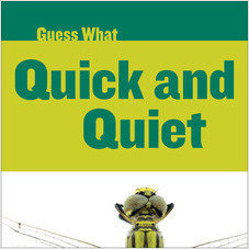 Cover: Quick and Quiet: Dragonfly