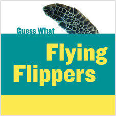 Cover: Flying Flippers: Sea Turtle