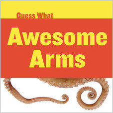 Cover: Awesome Arms: Octopus