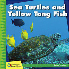 Cover: Sea Turtles and Yellow Tang Fish
