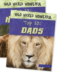 Cover: Wild Wicked Wonderful
