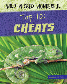 Cover: Top 10: Cheats
