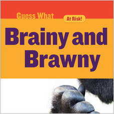Cover: Brainy and Brawny: Gorilla
