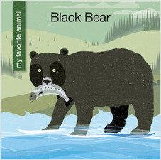 Cover: Black Bear