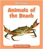 Cover: Animals of the Beach