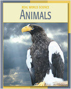 Cover: Animals