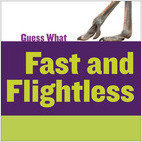 Cover: Fast and Flightless