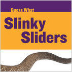 Cover: Slinky Sliders