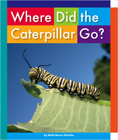 Cover: Where Did the Caterpillar Go?