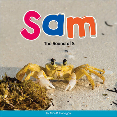 Cover: Sam: The Sound of S