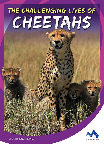 Cover: The Challenging Lives of Cheetahs