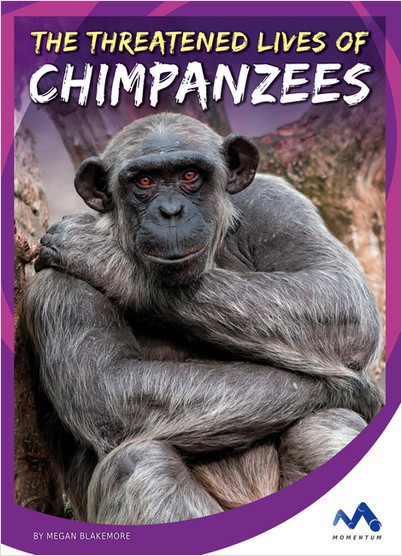 Cover: The Threatened Lives of Chimpanzees