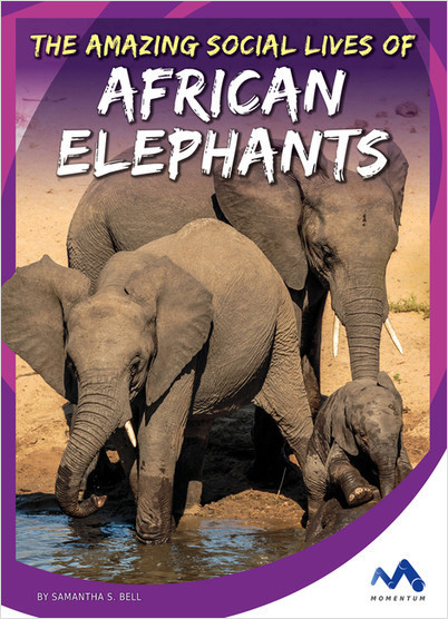 Cover: The Amazing Social Lives of African Elephants