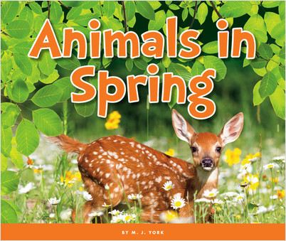 Cover: Animals in Spring