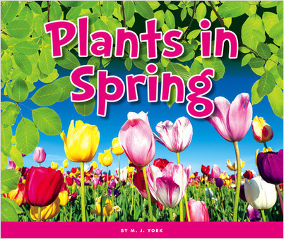 Cover: Plants in Spring