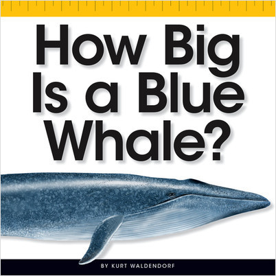 Cover: How Big Is a Blue Whale?