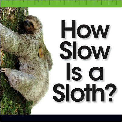 Cover: How Slow Is a Sloth?