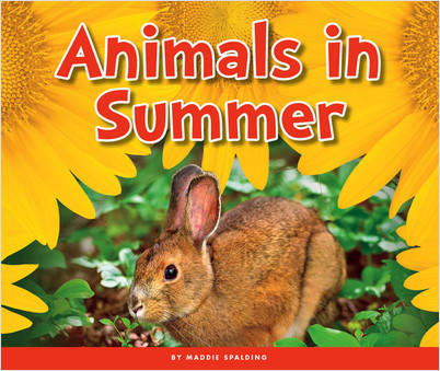 Cover: Animals in Summer