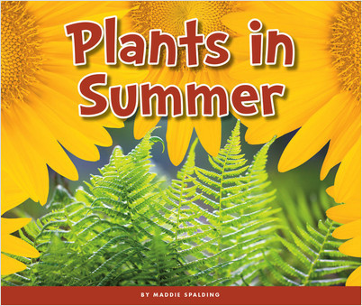 Cover: Plants in Summer