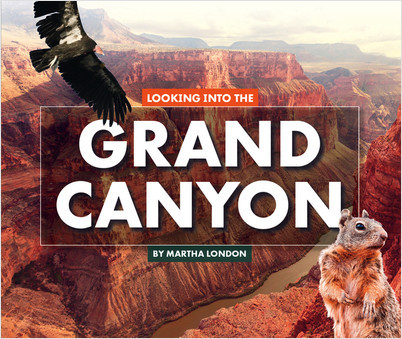 Cover: Looking Into the Grand Canyon