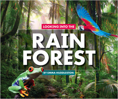 Cover: Looking Into the Rain Forest