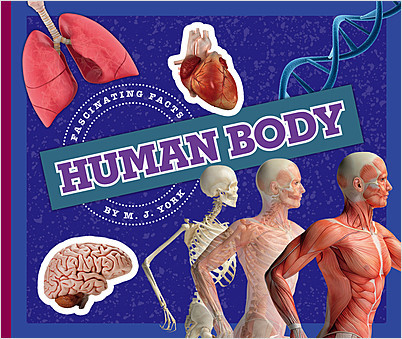 Cover: Human Body