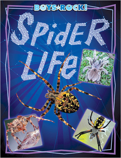 Cover: Spider Life