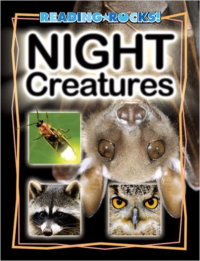 Cover: Night Creatures