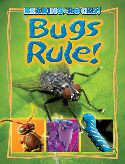 Cover: Bugs Rule!