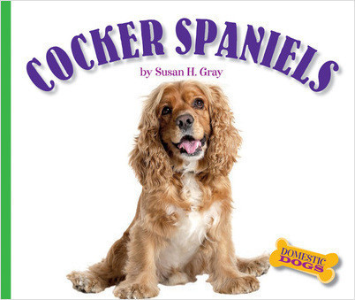 Cover: Cocker Spaniels