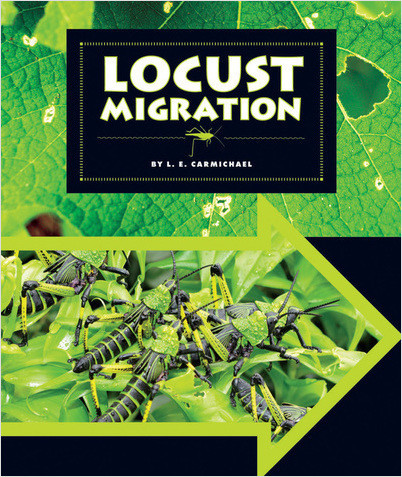Cover: Locust Migration