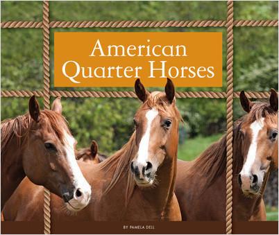 Cover: American Quarter Horses