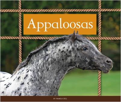 Cover: Appaloosas