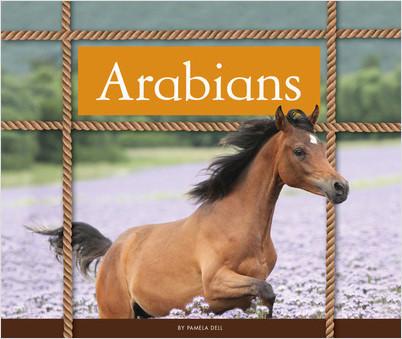 Cover: Arabians