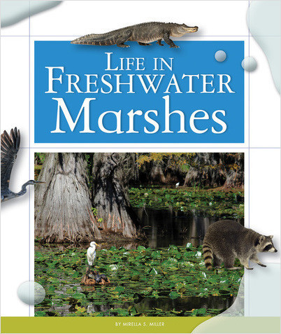 Cover: Life in Freshwater Marshes