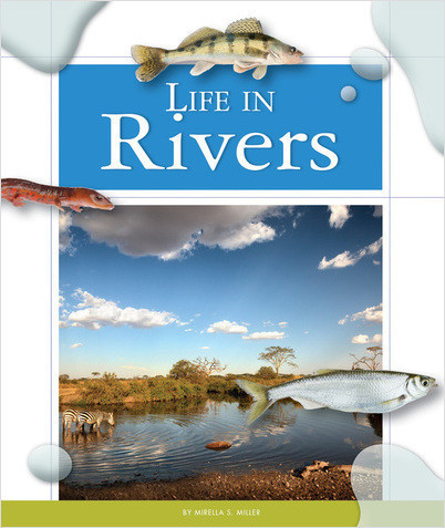 Cover: Life in Rivers