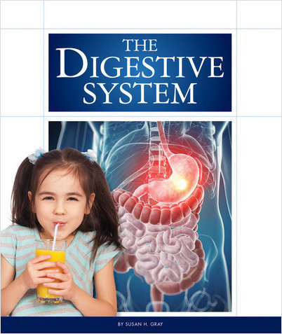 Cover: The Digestive System