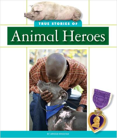 Cover: True Stories of Animal Heroes