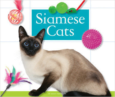Cover: Siamese Cats