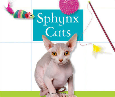 Cover: Sphynx Cats