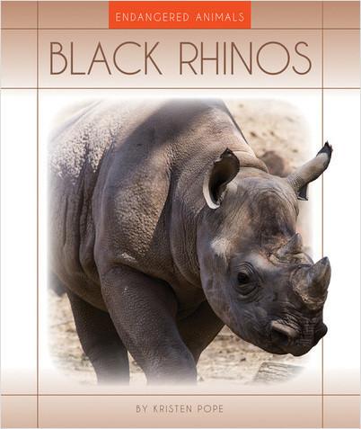 Cover: Black Rhinos