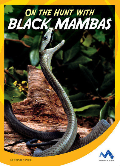 Cover: On the Hunt with Black Mambas
