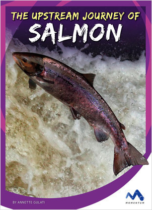 Cover: The Upstream Journey of Salmon