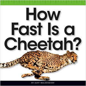 Cover: How Fast Is a Cheetah?