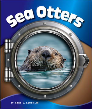 Cover: Sea Otters