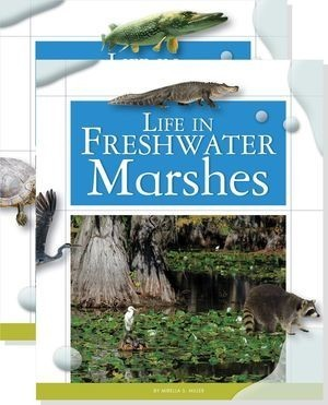 Cover: Life in Water Biomes